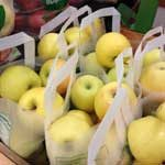 apple_yellowI150