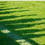 fence_lawn_shadow_yard_150